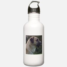 anatoilian shepherd Water Bottle