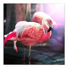 "Beautiful Flamingo Square Car Magnet 3"" x 3"""