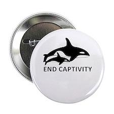 """Save the Orcas - captivity kills 2.25"""" Button"""