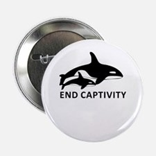 "Save the Orcas - captivity kills 2.25"" Button"