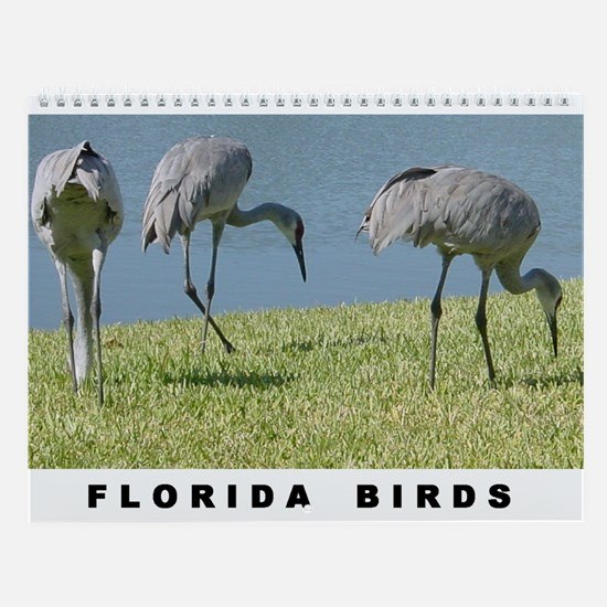 Florida Birds Wall Calendar