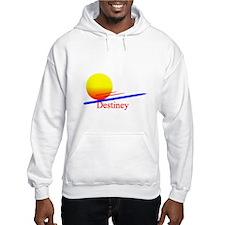 Destiney Hoodie Sweatshirt