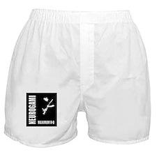 maximum-r+d_0409b-01.tif Boxer Shorts