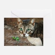 Happy Belated Birthday Tabby Cat Greeting Cards