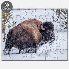 Tatonka Puzzle