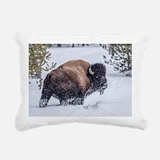 Tatonka Rectangular Canvas Pillow
