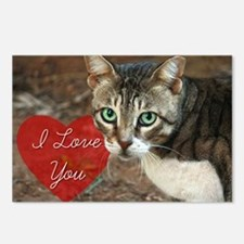 I Love You Valentine's tabby cat Postcards (Packag