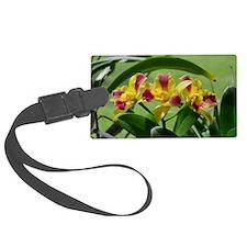 Orchid Cattleya Flower Fuschia Y Luggage Tag