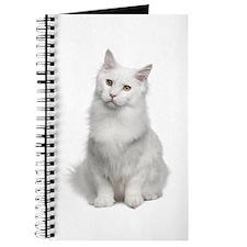 Angora Journal