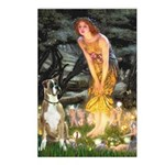 Fairies & Boxer Postcards (Package of 8)
