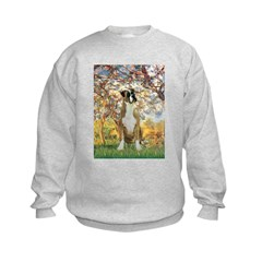 Spring with a Boxer Sweatshirt