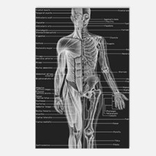 Dr Human Body Postcards (Package of 8)