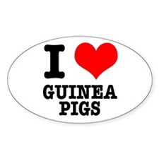 I Heart (Love) Guinea Pigs Oval Decal