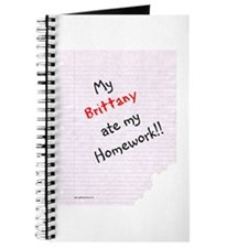 Brittany Homework Journal
