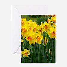 Yellow and Orange Daffodils Greeting Card