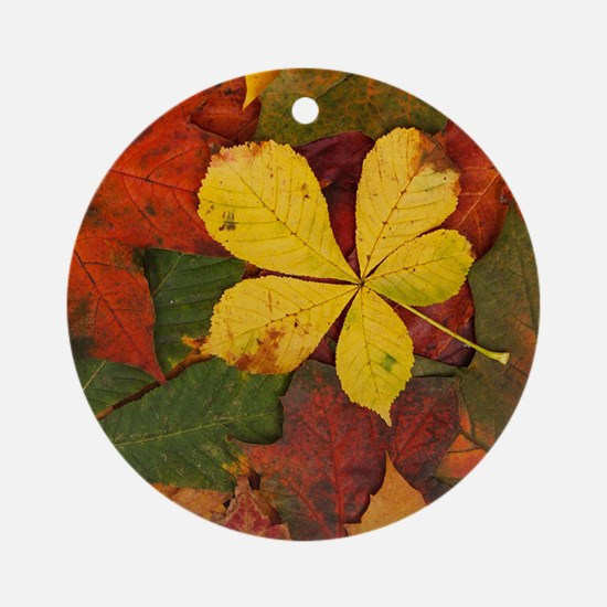 Walking on Soft Colorful Fall Leave Round Ornament