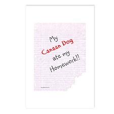 Canaan Dog Homework Postcards (Package of 8)