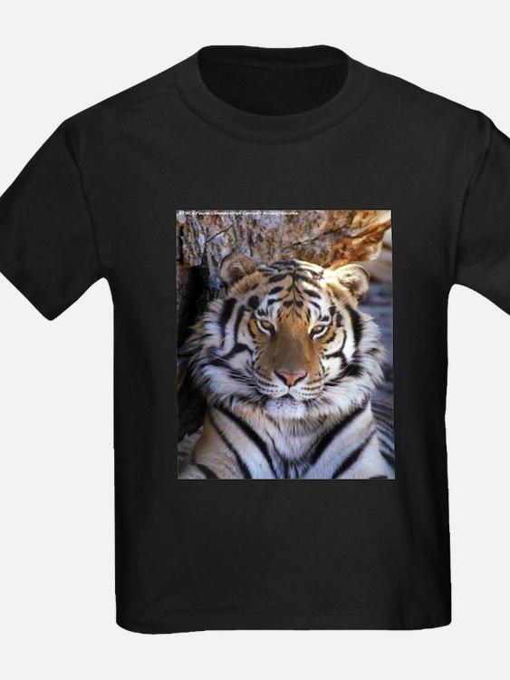 Siberian Tiger T Shirts, Shirts & Tees | Custom Siberian ... Cute Siberian Tiger Shirt