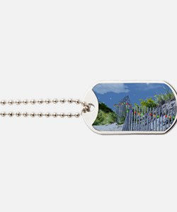 Beach Dune and Fence with Xmas Lights at  Dog Tags