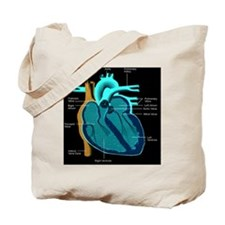 dr heart_diagram lr d Tote Bag