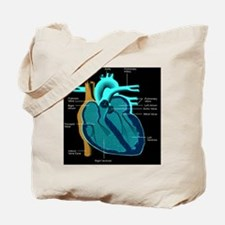 dr heart_diagram lr d Tote Bag