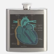 dr heart_diagram lr d Flask