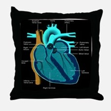 dr heart_diagram lr d Throw Pillow