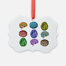 C Brain Ornament