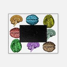 C Brain Picture Frame