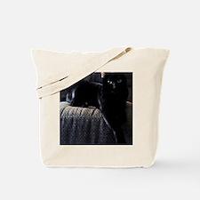 Beautiful Benny Tote Bag