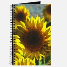 Sunflower Field Journal