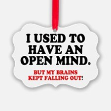 I USED TO HAVE AN OPEN MIND.... Ornament