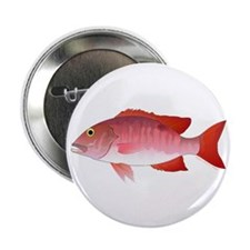 """Red Snapper 2.25"""" Button (10 pack)"""