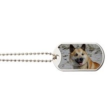 Icelandic Sheepdog 041 Dog Tags
