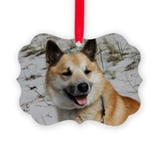 Icelandic Sheepdog 041 Picture Ornament