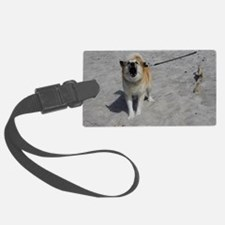 Icelandic Sheepdog 042 Luggage Tag