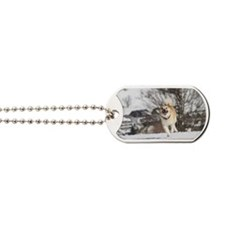Icelandic Sheepdog 042 Dog Tags