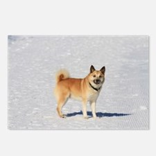 Icelandic Sheepdog 043 Postcards (Package of 8)