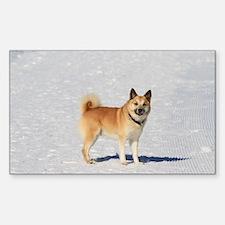 Icelandic Sheepdog 043 Decal