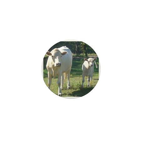charolais Mini Button (100 pack)
