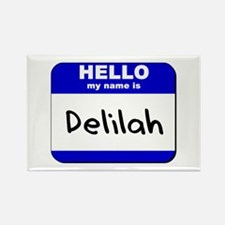 hello my name is delilah Rectangle Magnet