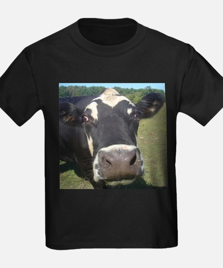 baldy cow T