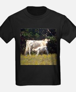 cow and calf T