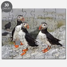 note card -front 5 Puzzle