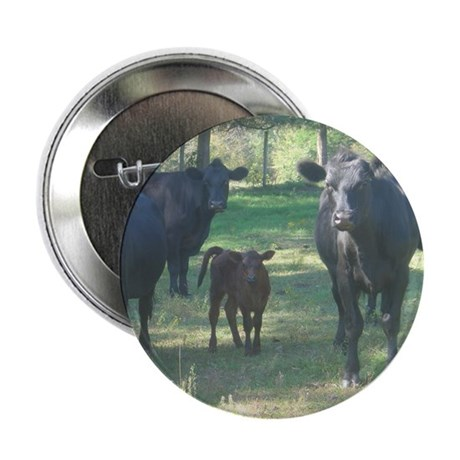 """black angus 2.25"""" Button (100 pack)"""