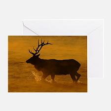 Bull Elk at Sunrise Greeting Card