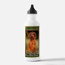 Irish Setter Dog Chris Water Bottle
