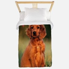 Irish Setter Dog Christmas Twin Duvet