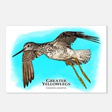 Greater Yellowlegs Postcards (Package of 8)