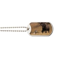 Bull Bison & Wolf Dog Tags
